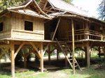 mon rêve : une maison en bambou