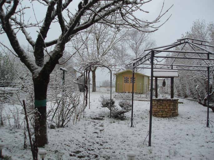 1 février 2012 au jardin