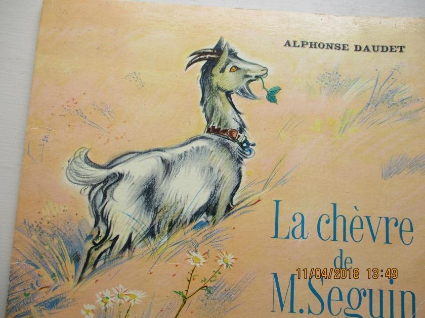 Chèvre de M Seguin