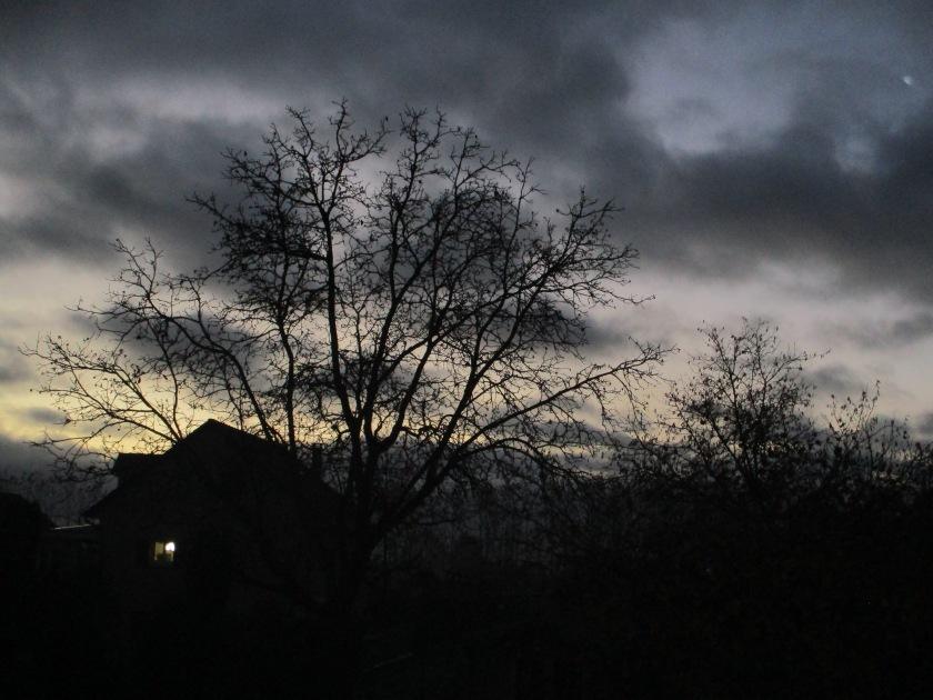 tôt le matin en décembre (1)
